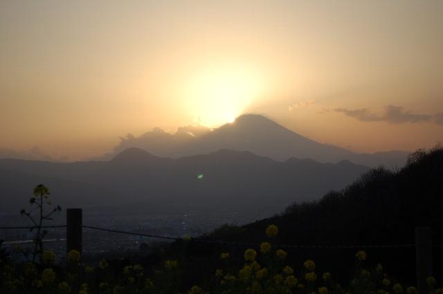 20100403_3