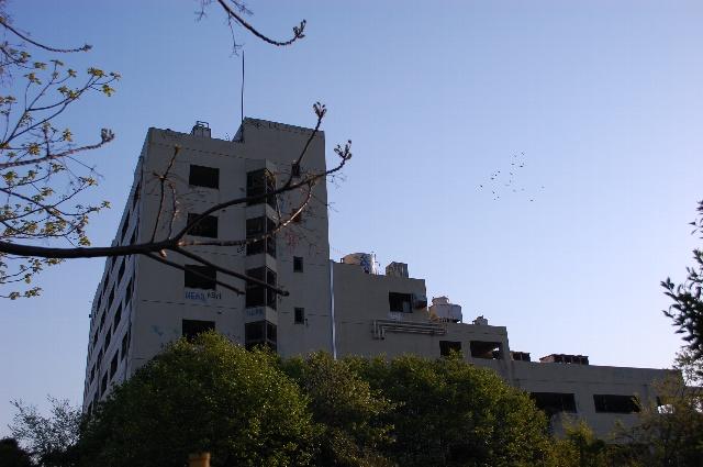 20100502_1