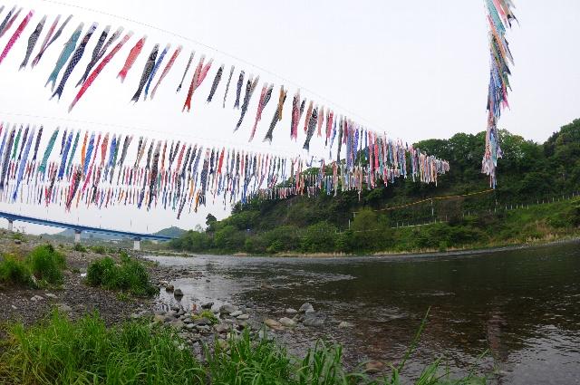 20100504_8